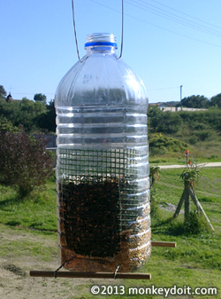 A bird feeder made from a plastic bottle and simple materials.